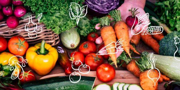 start an organic farm in Dubai, UAE